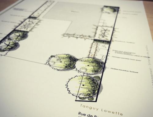 Plans de plantations